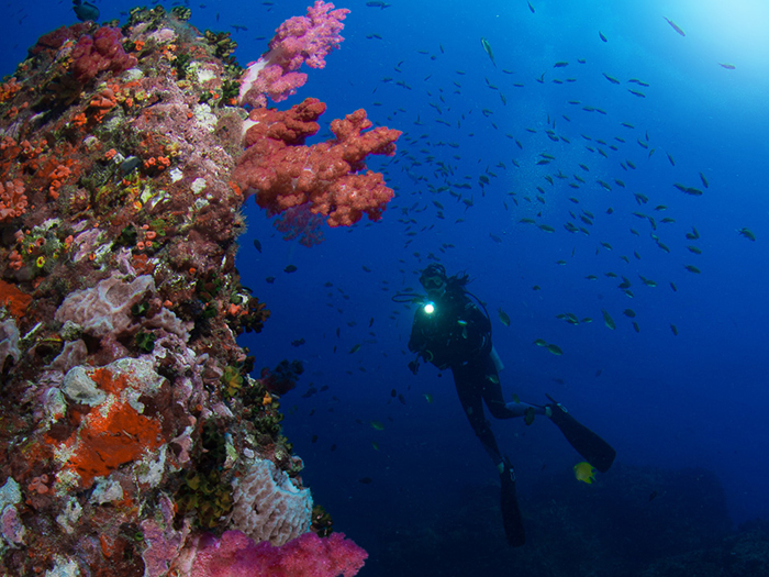 divers-guide-to-thailand-2