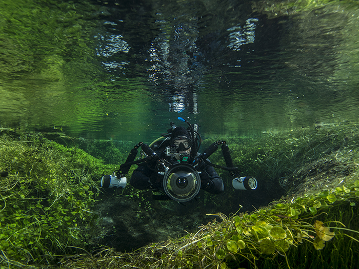 reasons-to-dive-south-australia-ewens-ponds-rosie-leaney
